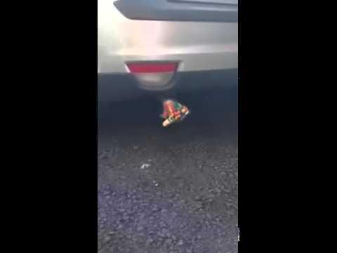 車のマフラーにパーティホーンをつけた動画が後引く面白さ