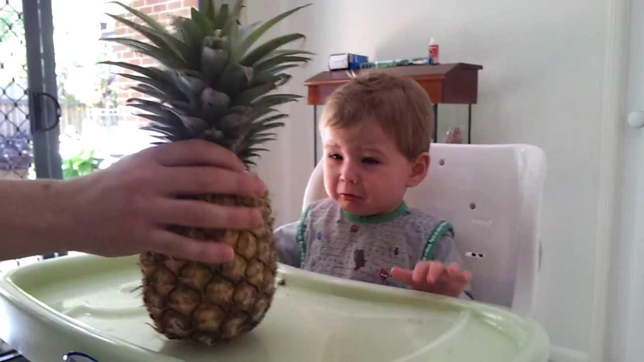パイナップルを生まれて初めて見た赤ちゃんの反応が可愛い動画