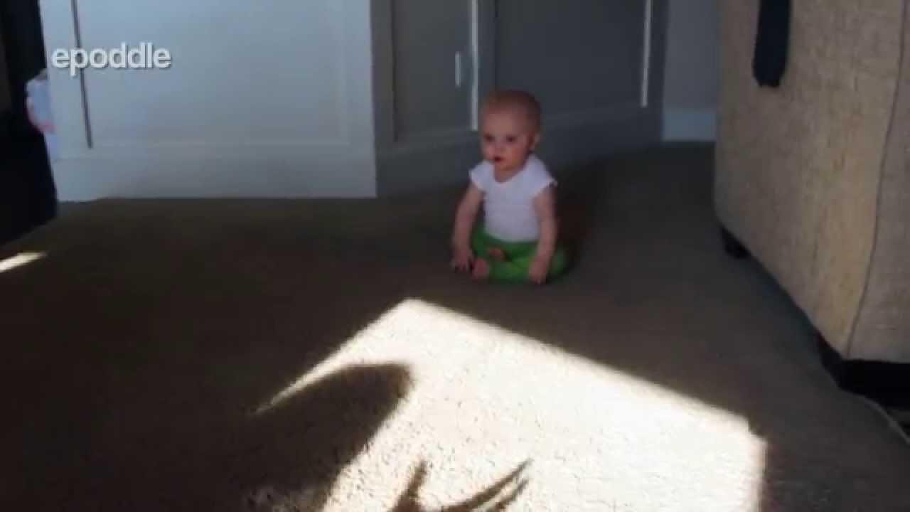移動する手の影が怖すぎて仕方が無い赤ちゃん