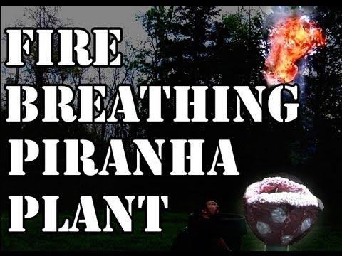 ちゃんと火も出る! マリオのパックンフラワーを再現!