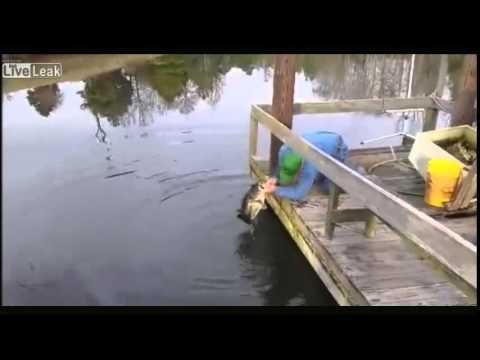 前世は熊? 釣具を使わずに素手で魚を取る男性