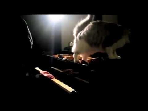 圧倒的表現力! 名作ゲーム「クロノトリガー」をピアノ演奏