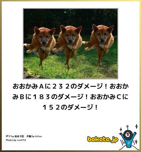 ドラクエ-ボケて-2